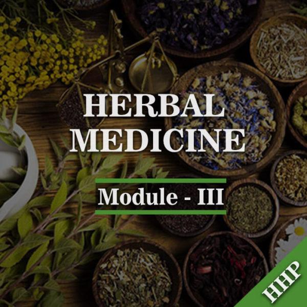 module-iii