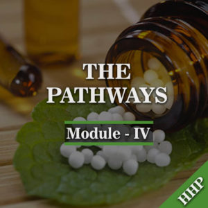 module-iv