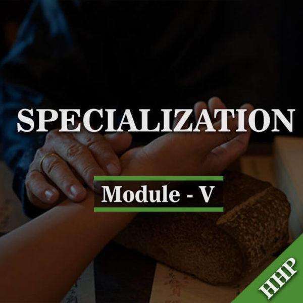 module-v